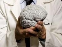 Vedci zistili, čo môže pomáhať pri mozgovej príhode