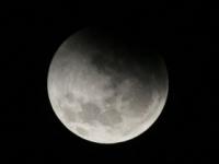 SpaceX plánuje výlet turistov okolo Mesiaca